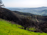 Green Ranch Road, Mount Diablo State Park