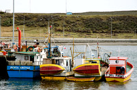 Fishing boats, Porvenir, Tierra del Fuego, Chile