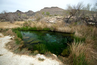 Kings Pool at Ash Meadows National Wildlife Refuge