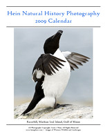 2009 Hein Natural History Photography Calendar