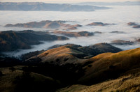 Moses Rock Ridge and Deer Flat, Mount Diablo State Park