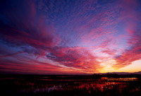 Winter Sunset at Sacramento National Wildlife Refuge, California