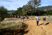 Bay Nature hike to Curry Canyon Ranch