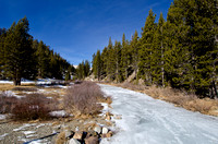 Frozen Saddlebag Creek near Tioga Pass
